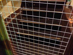 猫居酒屋の入口は猫脱走防止の網
