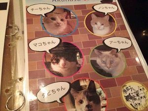 猫居酒屋赤茄子のメニューを彩る猫たち