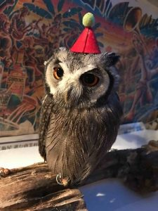 アウルの森には至る所にフクロウさんに帽子をかぶせてみました