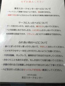 東京スネークセンターに入店すると注意事項説明がある